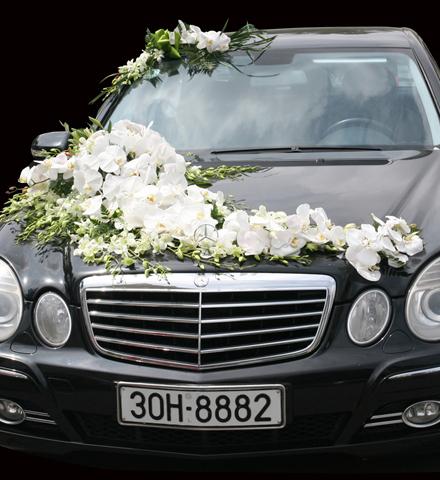 Trang trí hoa xe cưới hoa hồ điệp