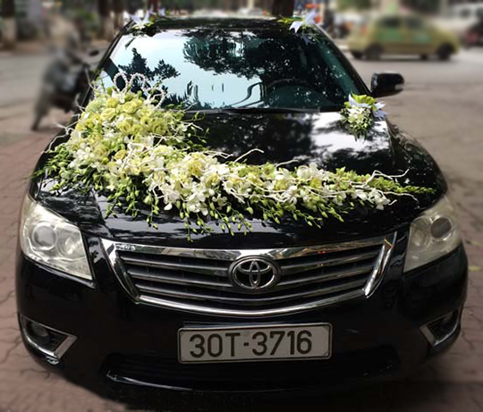 Trang trí xe hoa ngày cưới hoa lan trắng xanh