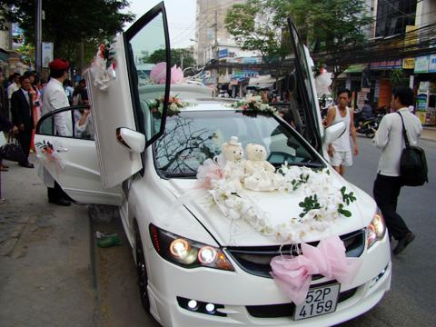 Xe cưới đẹp lộng lẫy hoa hồ điệp