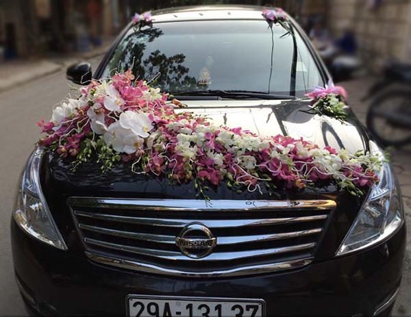 Xe hoa ngày cưới hoa lan trắng hồng