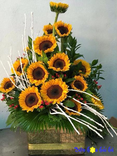 Giỏ hoa chúc mừng hoa hướng dương