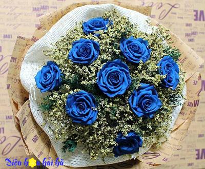 Bó hoa 8/3 hoa hồng xanh dương