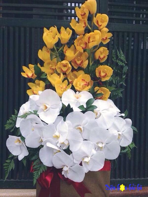Giỏ hoa địa lan và hồ điệp trắng tặng mẹ