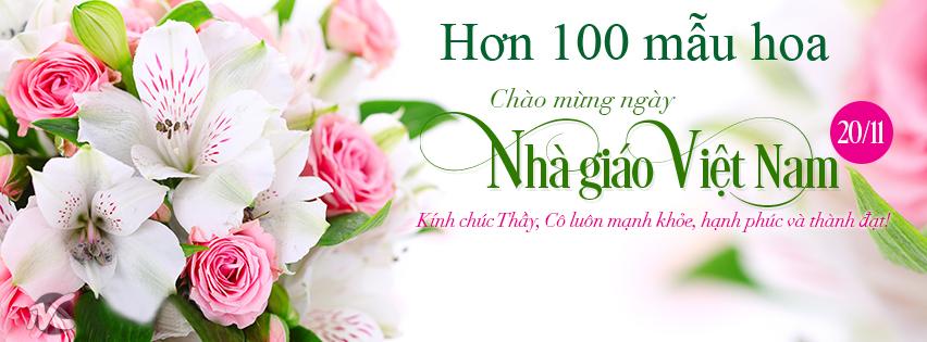 Hoa ngày Nhà giáo Việt Nam
