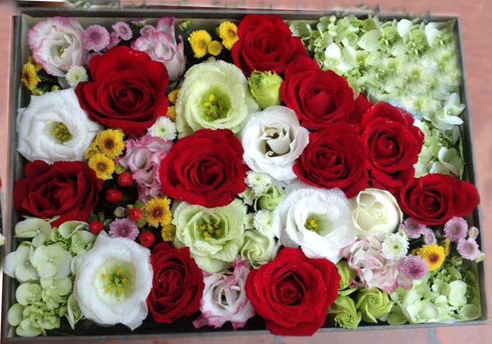 Hộp hoa Valentine nhiều mầu