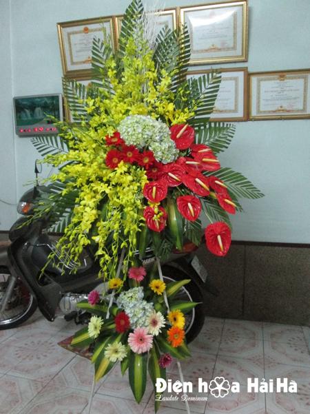 Lẵng hoa chúc mừng hoa lan vàng hồng môn đỏ