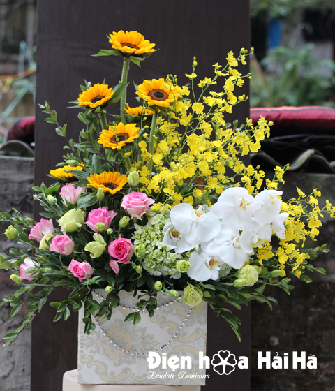 Giỏ hoa tặng 8/3 hồng sen vũ nữ