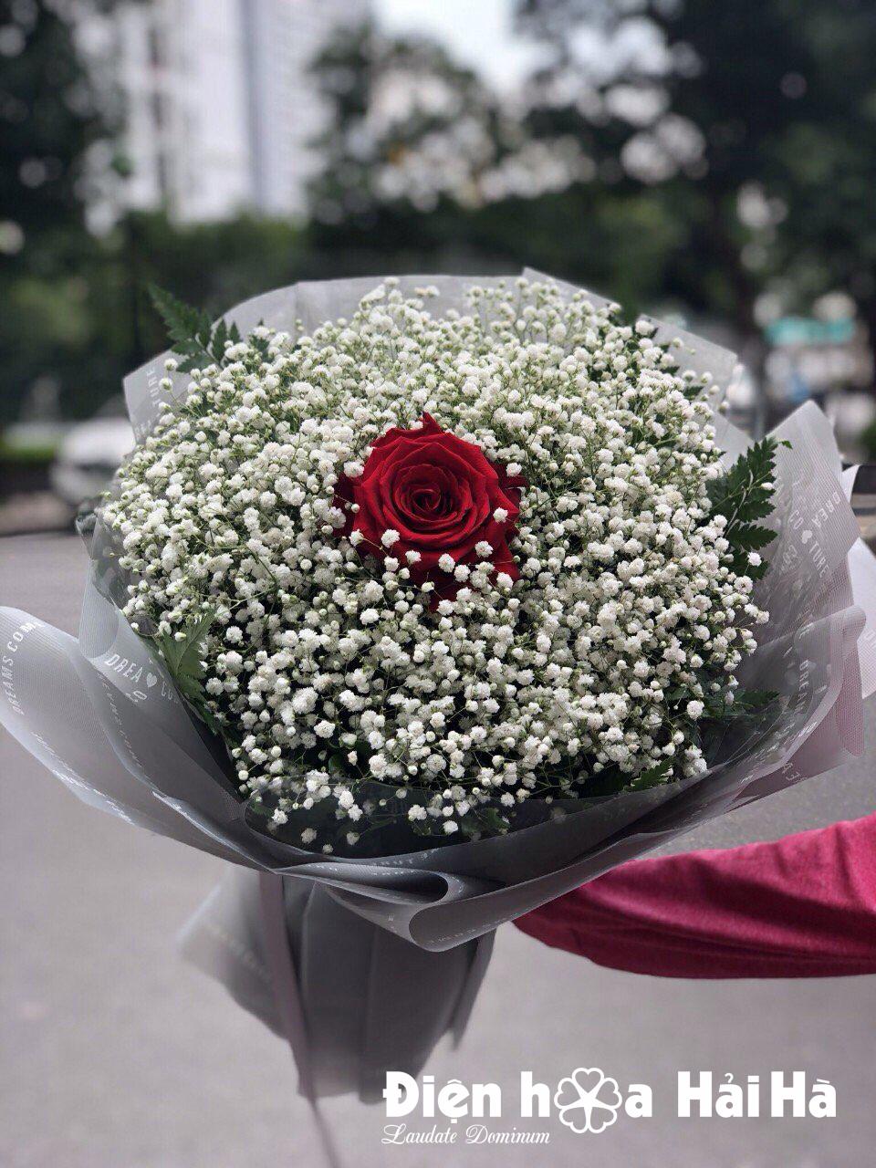Bó hoa baby trắng kèm 1 bông hồng đỏ Ecuador